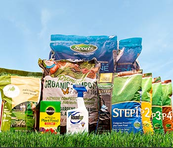 grass seed, lawn care, weed control