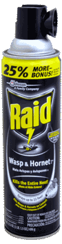 Raid Wasp & Hornet Spray 14oz